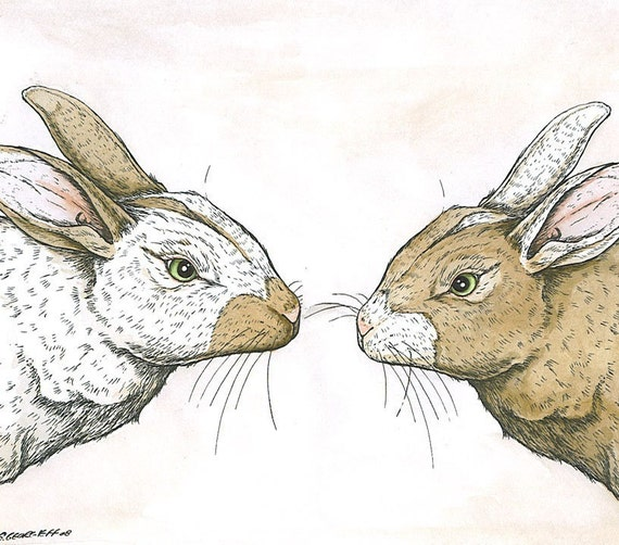 Brown and White Rabbits hand colored 8 x11 print