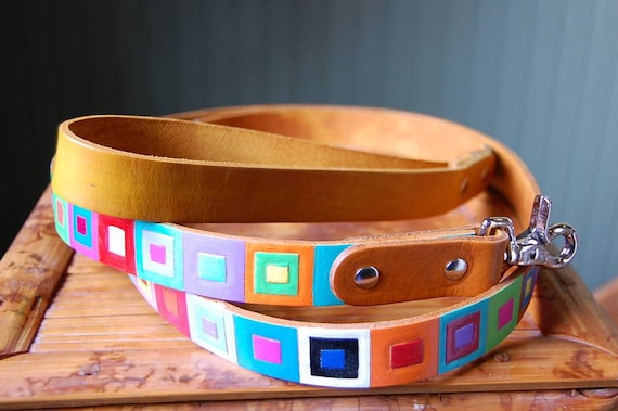Colored Squares Dog Leash
