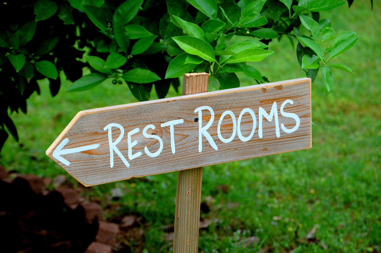 Restroom Sign Party Sign Wedding Sign Wooden SAY By
