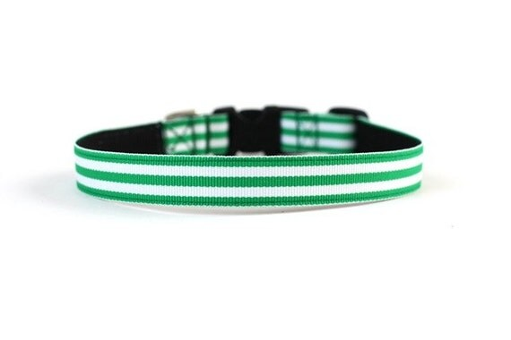 5/8 or 3/4 Inch Wide Dog Collar with Adjustable Buckle or Martingale in Shamrock Stripe