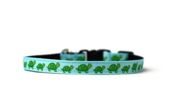 3/8 Wide Collar for Cat or Tiny Puppy in Turtle Fun Blue