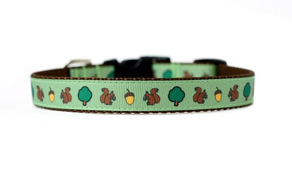 5/8 or 3/4 Inch Wide Dog Collar with Adjustable Buckle or Martingale in Aww Nuts an Exclusive Design