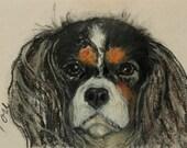 Cavalier King Charles Spaniel Dog Art Note Cards By Cori Solomon