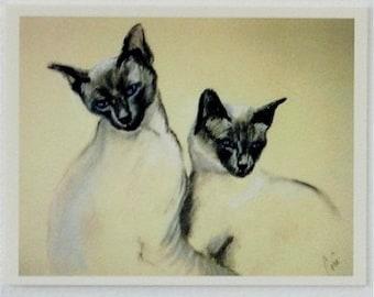 Siamese Cat Art Note Cards By Cori Solomon