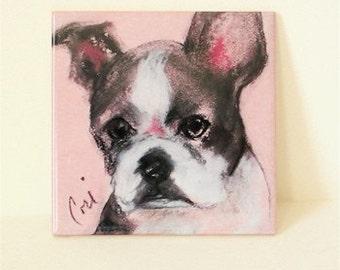 Boston Terrier Dog Art Tile Coaster Trivet  By Cori Solomon