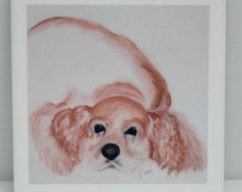 Cocker Spaniel Dog Art Tile Coaster By Cori Solomon