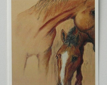 Two Bay Horses Horse Art Note Cards By Cori Solomon