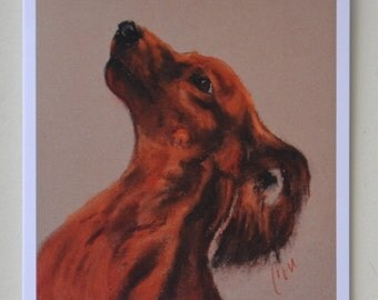 Long Haired Dachshund Doxie Dog Art Note Cards By Cori Solomon
