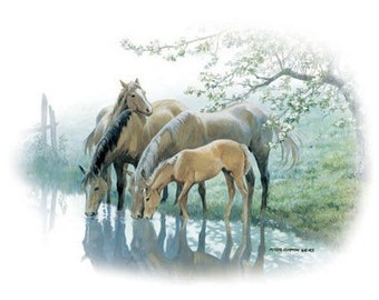 Family of Horses drinking from the river on Sweatshirt - A Taste of Spring