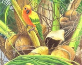 Parrot in Palm Note Card