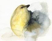 "watercolor painting-bird watercolor-shabby chic decor, cottage, home, minimalist, white ""Coal""  - yellow bird art,"