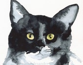 The Stare- Cat Art, Archival print