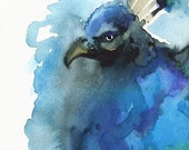 Peacock art- Sprirograph Blue
