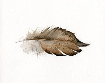 feather art - Gold Laced Wyandotte Feather- print