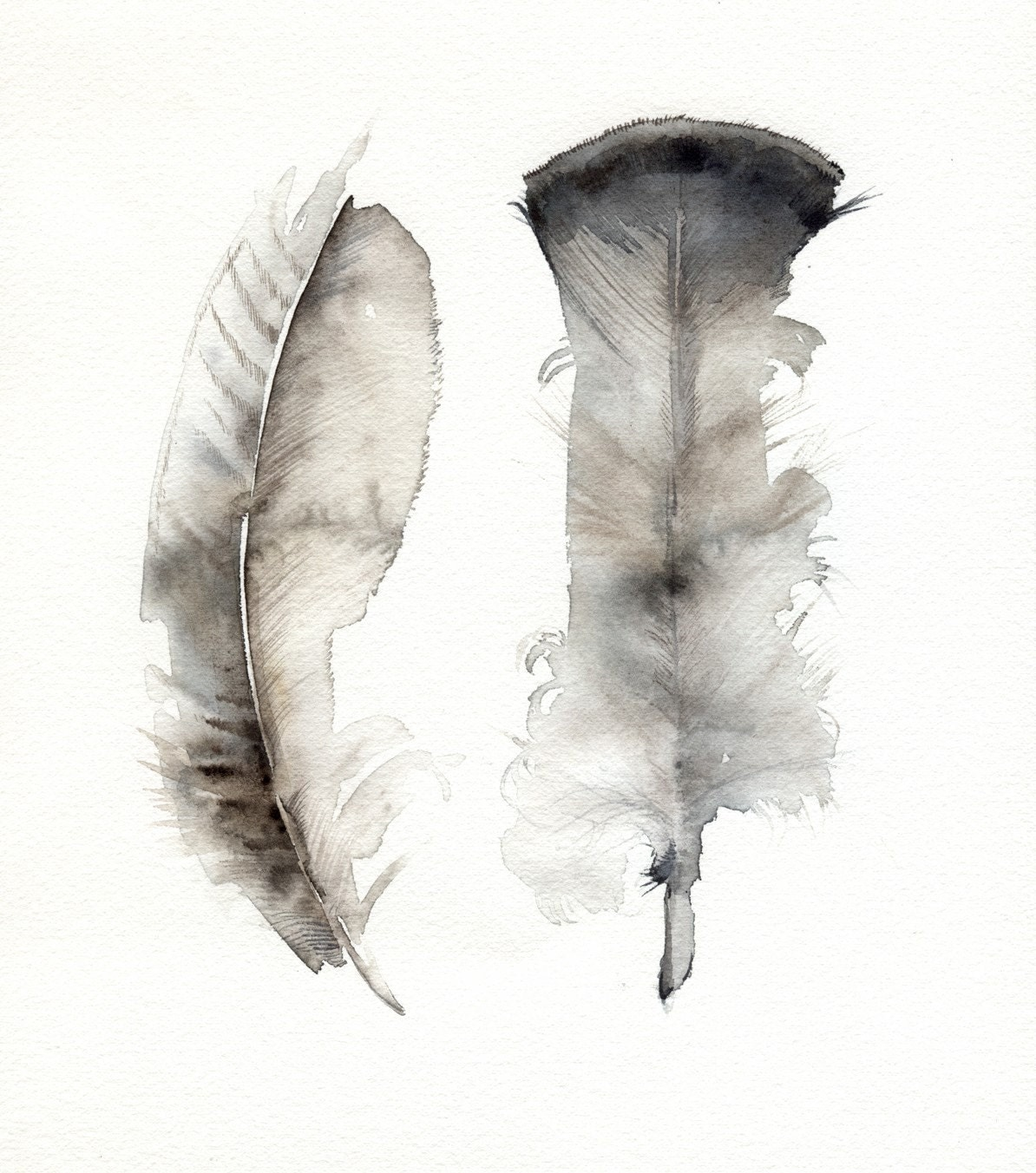 turkey feathers original watercolor painting