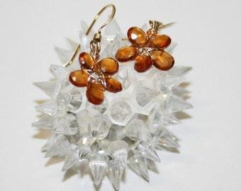 Garnet Earrings in Gold