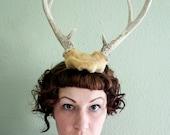 Deer Antler Headband - butterscotch base with 6 point horns
