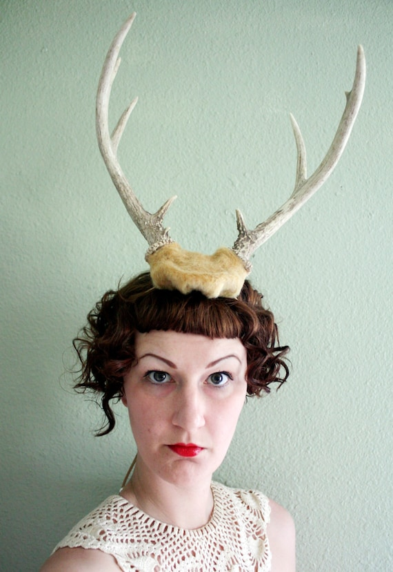 Deer Antler Headband - butterscotch base with 6 point horns