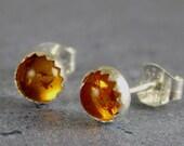 Baltic Amber Stud Earrings in sterling silver