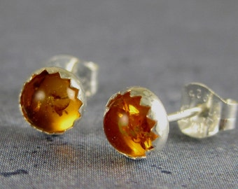 Amber Earrings, sterling silver, amber studs, amber post earrings, amber jewelry, baltic amber, natural amber, gift for her, autumn