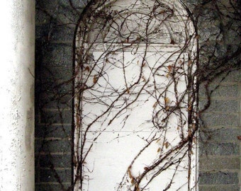Secret Password Abandoned Urban Exploration photography, Hidden Tolkien arched stone door home office decor, white, gray, vines