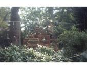 Hua Mei Bird Garden, June 2008