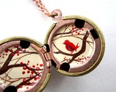 Holly Bird Locket - Hand-painted in Christmas Berry Red with Chocolate Brown and Cream - Vintage Stock Brass Ball