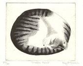 Original Cat Etching - Sleepy Head - by Kay McDonagh