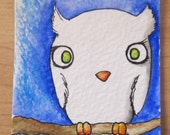 Arcadius the Albino Owl- Original ACEO
