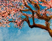 Cherry Tree Fine Art Print--13x19 inches with Matte