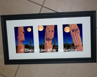 Halloween Saguaro Cactus Jack-o-Lantern Photograph Triptych
