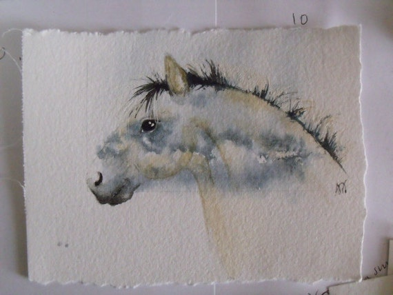 Fjord Horse on a cloudy Scottish sky     Original Watercolour