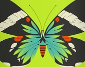 blue moth limited edition print (green version)