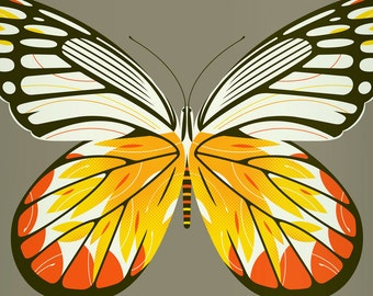 jezebel butterfly limited edition print