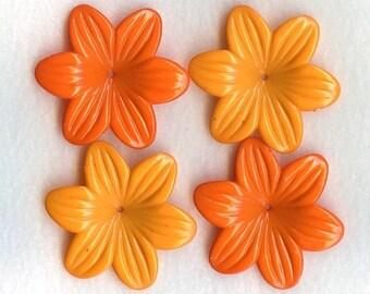 Happy Petals Citrus