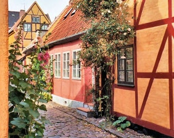 Scandinavian Travel Photography Quaint Cobblestone Street photo Helsingor Denmark Danish wall art  5x7 or 8x10 Photograph Metallic Paper