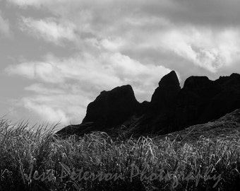 Kauai Travel Photography Kalalea Mountain photos King Kong's Profile Black & White decor wall art 11x14, 8x10 matted to 11x14 Print In Stock