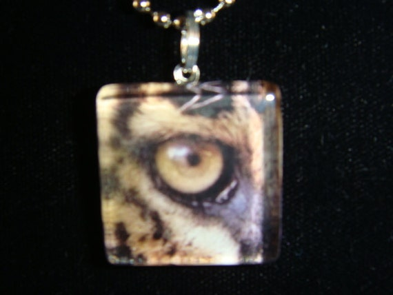 1 Inch Glass Pendant Necklace of a Cheetah Eye See You