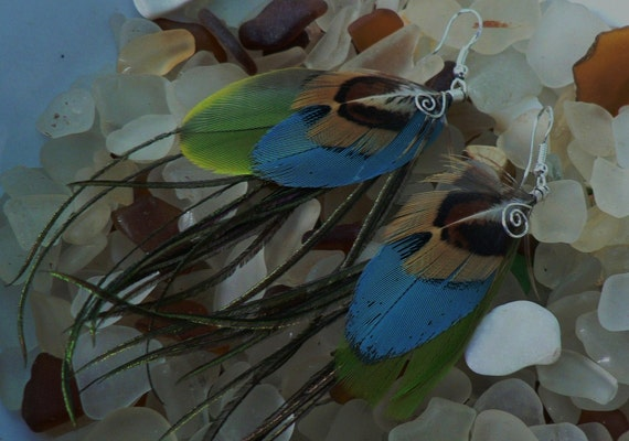 Feather Earrings, natural earthy colors with green and blue parrot feathers
