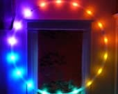 Rechargeable LED Hula Hoop