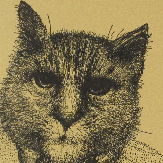 Ben's Cat