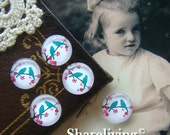 12mm Photo Glass Cabochon, 8mm 10mm 14mm 16mm 20mm 25mm 30mm Round Plum Blossom With Brids glass Cabochon - BCH014L