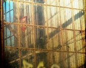Rust Decay Industrial Windows Photograph--ASO Window Cleaners--Fine Art