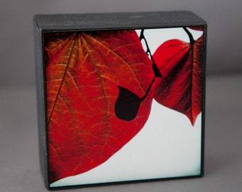 RedLeaf Pale Blue Photograph on Wood Panel--Me and My Shadow--4x4 Fine Art