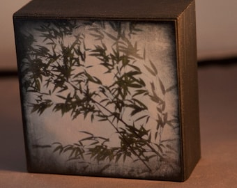 Black Bamboo 4x4 Original Fine Art Photograph on Wood Panel
