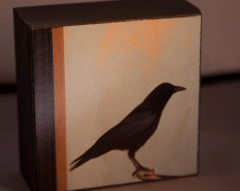 Crow Blue Photograph on Wood Panel--Honorable Crow--4x4 Fine Art Photograph