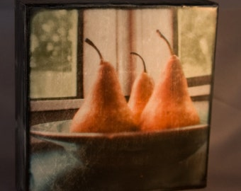 Three Stand Up Pears 6x6 Encaustic Photograph on Wood Panel