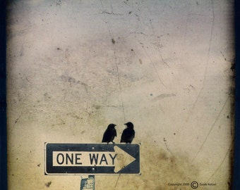 Sepia Beige Crows Photograph--One Way or Another--TTV Fine Art