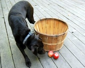 Vintage Basket Bushel Basket Splint Wood Apple Basket