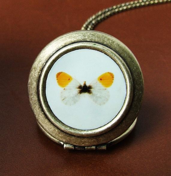 CLEARANCE SALE - Flutter- Butterfly Photo Locket Necklace